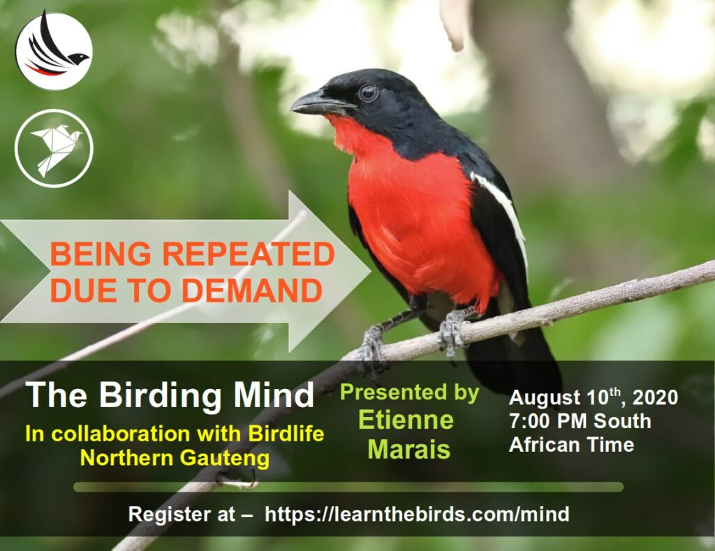 The Birding Mind