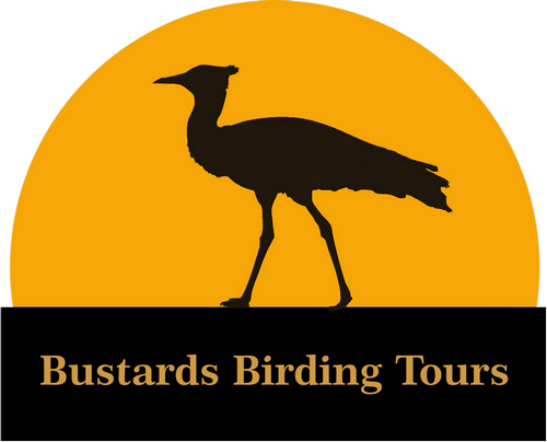 Bustardsbirding logo